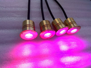 China Submersible Embedded LED Swimming Pool Lights with brass housing, CE factory